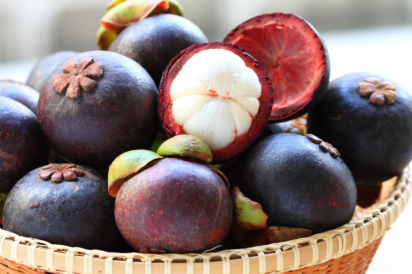 Sejuta Manfaat Minuman Kesehatan Bioxanthon Kulit Manggis