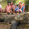 3 Daya Tarik Wisata Labuan Bajo Yang Menjadi Magnet Bagi Para Turis